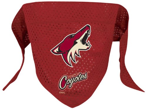 NHL Phoenix Coyotes Pet Bandana, Team Color