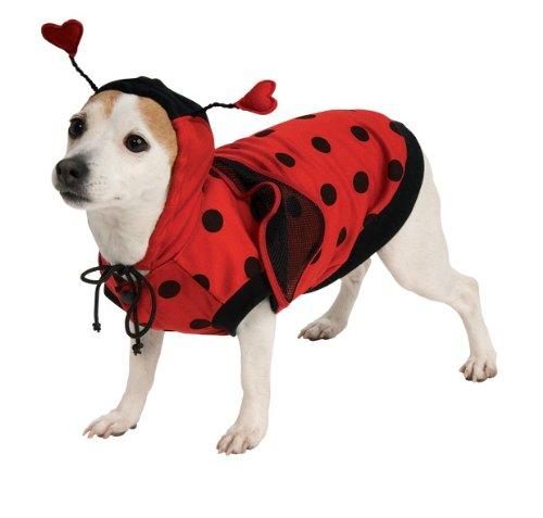 Lady Bug Pet Kostüm
