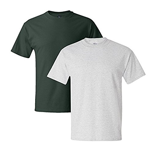 Hanes Mens 5180 Short Sleeve Beefy T 1 Ash / 1 Deep Forest