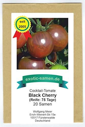 Schwarze Cherry-Tomate - süß, aromatisch - Black cherry - 20 Samen