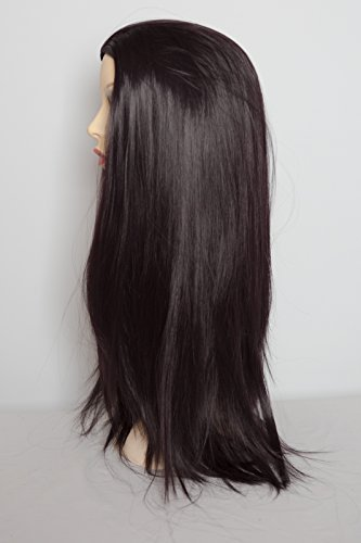 22-3-4-wig-straight-black-plum