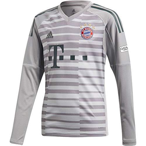 adidas Kinder 18/19 FC Bayern Torwart Trikot, Grey one/Light Granite/Utility ivy, 164