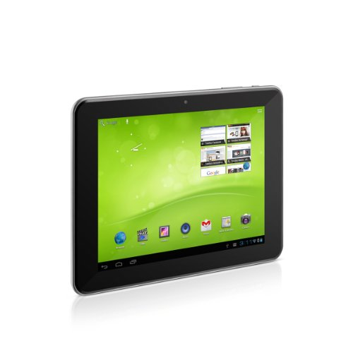 TrekStor SurfTab Ventos 8.0 20,3 cm (8 Zoll) Tablet-PC (Rockchip Dual Core, 1,6GHz, 1GB RAM, 8GB HDD, Android 4.0) schwarz/silber