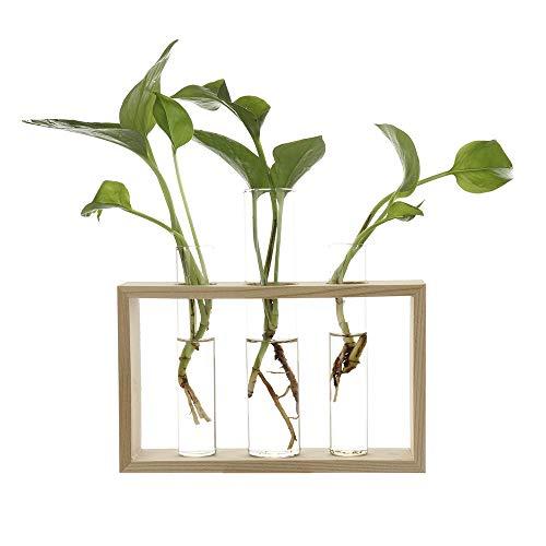 Wuxi Chuannan Wasserpflanzen-Glasvase, Reagenzglas, Moderne Blume, mit Retro-Ständer, aus massivem Holz, Tischplatte für Hydrokultur, Pflanzen zu Hause, Garten (Glas-vase Blumen Mit)