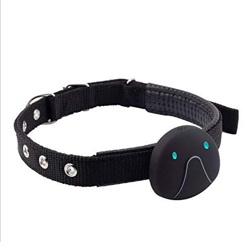 Wrqq Pet Localizador GPS Perro Inteligente Mini Tracker Impermeable Anti-Perdida Collar para Mascotas Gatos LocalizacióN Buscador Alarma En Tiempo Real Dispositivo De Seguimiento,Black,49 * 46 * 20mm
