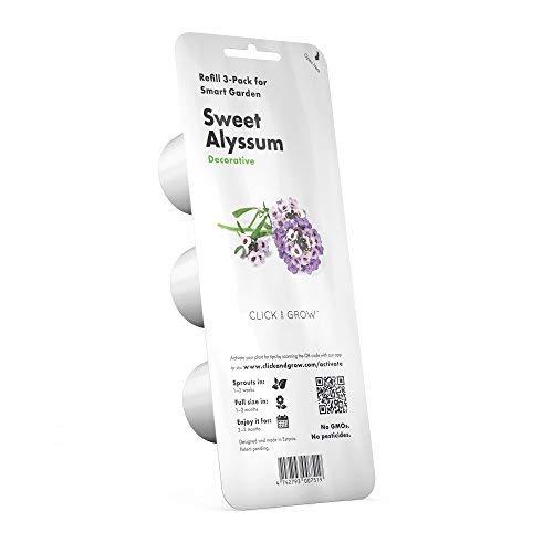 Click & Grow Smart Garden Refill Kapseln | Sweet Alyssum 3er Pack (Seed Pod Kit)