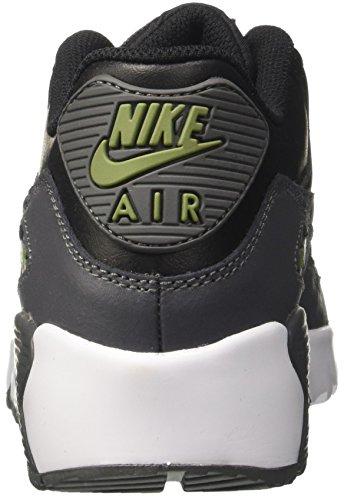 Nike Air Max 90 Ltr Gs, chaussure de sport garçon Noir (Black/dark Grey/palm Green/whi)