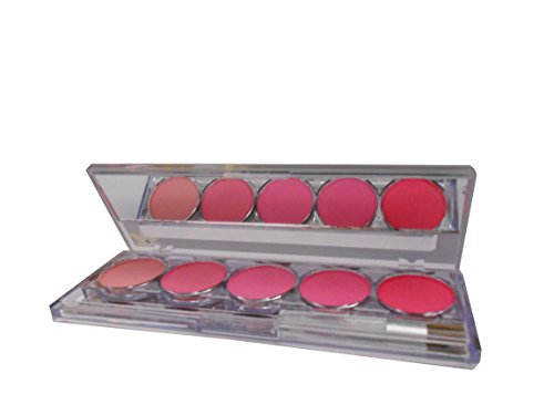 Kiss Beauty 5 Color Long Lasting Blusher Palette-With Free Mars Eye/Lip Liner & Adbeni Hair Accessories-MTST