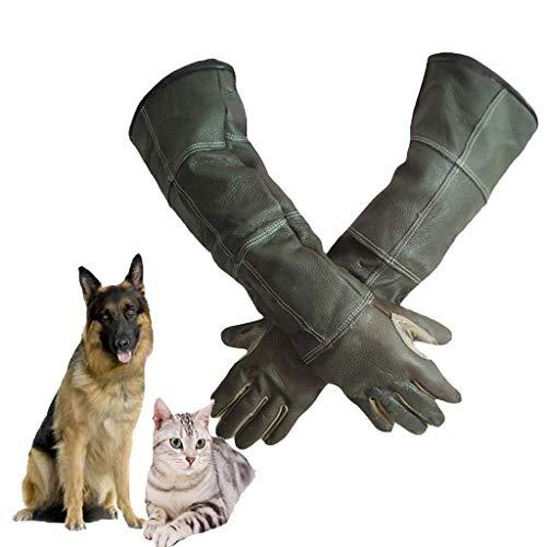 Tierbehandlungshandschuhe Hunde, Katzen, Vögel, Papageien, Eidechsen, Anti-Biss/Kratzer, Gartenbau, Wildlife Protection, Anti-Bite-Tier Verdicken Handschuhe, (größe : M)