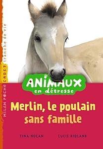 """Afficher """"Animaux en détresse Merlin, le poulain sans famille"""""""