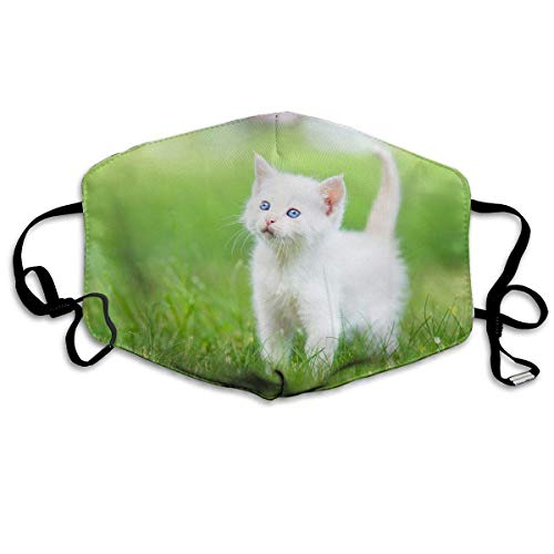Fashion Outdoor Mouth Mask, Face Masks with Design, Reusable Mouth Face Masks Fashion Cat Baby Earloop Mask Washable Outdoor Anti-Dust Allergy Windproof 152 White