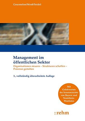 Management im öffentlichen Sektor: Organisationen steuern - Strukturen schaffen - Prozesse gestalten