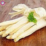 ! La promozione 10 pc/Sacchetto Reale Asparagi Verdure e Frutta in Vaso delle Piante Casa e Giardino 95% Tasso di germinazione dei Bonsai Fiore: 1