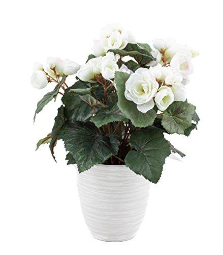 artfleur - künstliche Begonie Schiefblatt 30cm Blühpflanze Kunstpflanze Topfpflanze