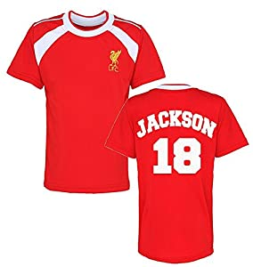 Offical Liverpool FC Personalised Name and Number T-shirt Children's T-shirt Liverpool Football Fan Offical Club Training Top from ICKLE PEANUT