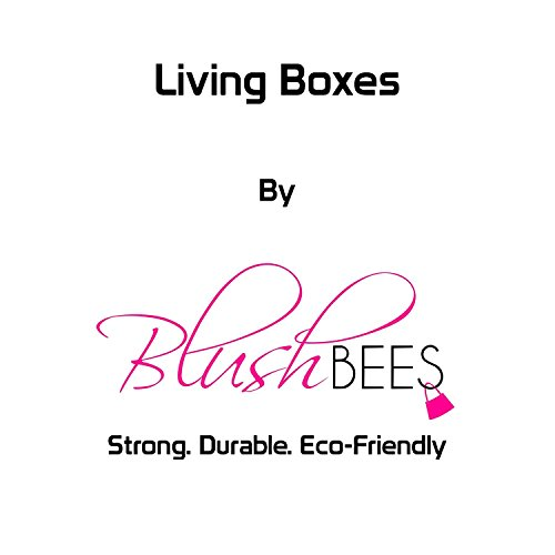 BlushBees® Living Box - Utility Combo Storage Boxes for Clothes with Zip - 24 + 66 Litre, Pack of 2, English Brown