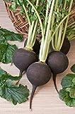 PLAT FIRM Semi germinazione dei semi PLATFIRM-Online Legend Garden Lettuce Leaf Tropicana calore tolleranti 500 sementi biologiche
