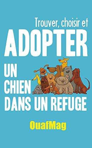 Trouver, choisir et adopter un chien dans un refuge par Laetitia OuafMag