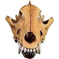 JIUQING decoracion interiores cráneo resina modelo animales skull cráneos accesorios hogar Lobo