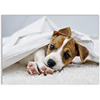 60x52cm Jack Russel Terrier Wasser Wallario Herdabdeckplatte 1-teilig aus Glas