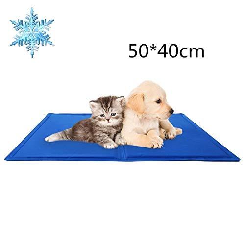 DAOXU Pet Dog Cat Cool Tappetino Tappetino di Raffreddamento Gel Calore Letto Cuscino Sollievo atossico (M 50x 40cm)