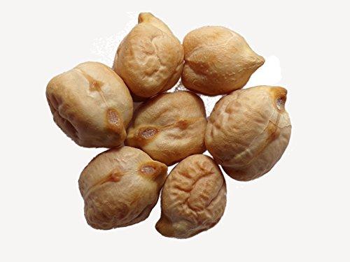 Pois Chiche Commun - 15 grammes - Cicer Arietinum - Chickpea - SEM02