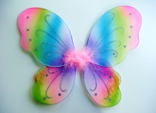 Kids and Toddler Rainbow Fairy Costume Wings by Lil Princess