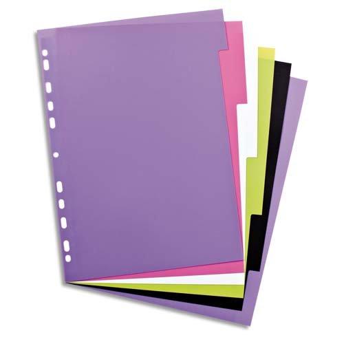 ELBA 400005445 Kunststoff-Register myColour blanko 6 Blatt 6-teilig für DIN A4 Plastikregister mit beschriftbarem Deckblatt Ringbuch Ordner Ring-Mappe multicolor