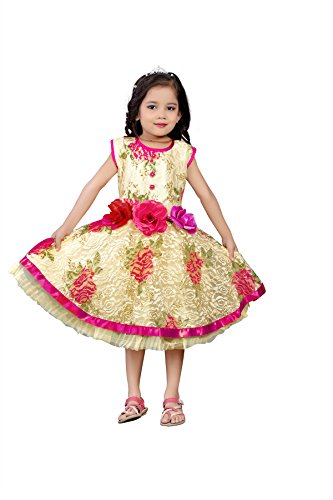 White World Baby Girls Pink Color Birthday Party wear Frock Dress_2-3 Years
