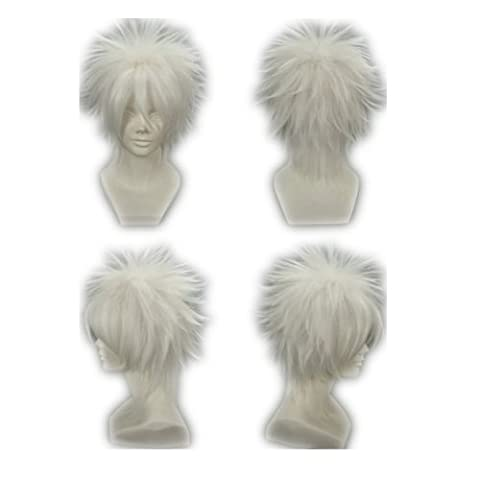 COSPLAZA Cosplay Wig Kostueme Peruecke Reborn! Byakuran kurz Weiss Anime Synthetische Haare (Byakuran Kostüm)