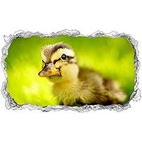 huge discount 7628c ea11f Suchergebnis auf Amazon.de für: Ente & Gans - Nicht ...