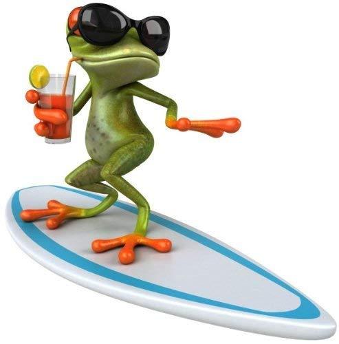 younikat Sticker Surfer Frosch I 15 x 15 cm I für Laptop Koffer Roller Motorrad Badezimmer Duschwand als Auto-Aufkleber I lustig cool wetterfest I kfz_010