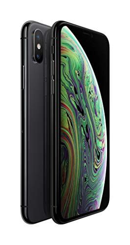 Apple iPhone XS 64Go Gris Sidéral (Reconditionné)
