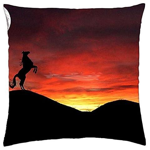 iRocket - wild horse and a firery sky - Throw
