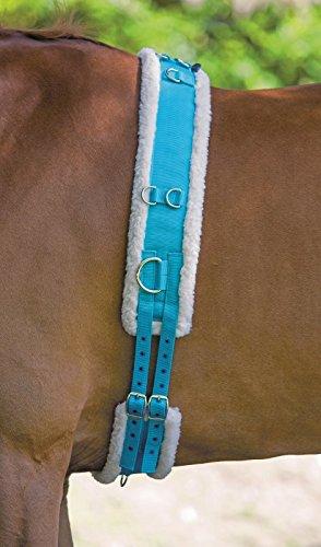Shires Surfaix en nylon avec rembourrage en polaire-Bleu?: COB