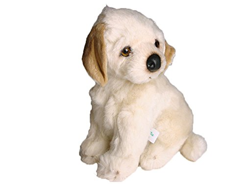 Piutrè 1202sitzend beige Labrador Retriever cm. 30 (Katze Spielzeug Cricket)