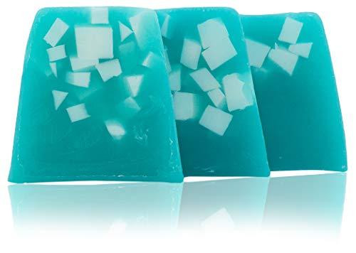 100% natürliche handgemachte Seife mit Algen, Kakaobutter, Avocadoöl, Traubenkernöl. Elixier der Jugend. Hände, Füße, Haare und Körper antibakterielle und antimykotische Seife. 3x100 gr. - 100% Reine Algen
