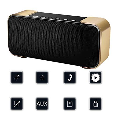 QLPP Drahtloser Bluetooth-Logerner mit Lautem 10W Stereo Rich Bass Built-in Mic FM Radio TF Card Play und 3,5mm Aux Input für Home Outdoors Travel