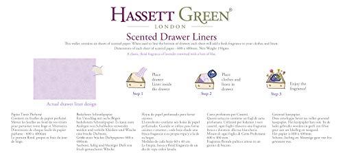 dimensioni 600 x 400 mm Hassett Green London Fogli profumati per cassetti in cotone naturale confezione da 6 pezzi Confezione doppia.