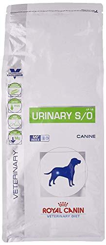 ROYAL CANIN Urinary Secco Cane kg. 2 - Alimenti Secchi Dietetici per Cani