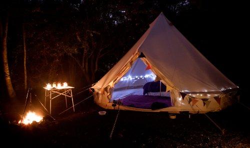 solar-brite-tm-50-led-blanche-ultra-lumineuse-guirlande-solaire-idal-pour-les-arbres-le-camping-les-