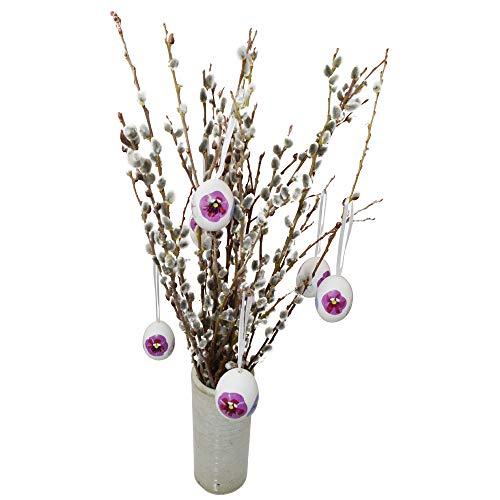 20 Palmkätzchen ca. 40 cm | Deko-Zweige für Vase | Weidenkätzchen im großen Bund | Frühlings-Deko innen und außen