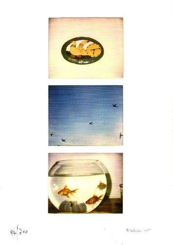 geiger-10-per-adriano-spatola-1966-1996