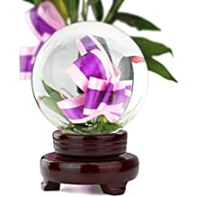 693788bf46 HBF 100 mm Bola De Cristal Transparente con Soporte De Madera Bola De  Vidrio Transparente para