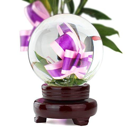 HBF Sfera di Cristallo con Supporto Legno Sfera Magica Trasparente Diverse Dimensioni 8 10 13 CM Bella Decorazione Palla di Cristallo Fotografia in Vetro