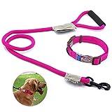 Touchdog Hundeleine mit Halsband und Clip, Hundegeschirr aus Nylon mit bequemem geschäumtem Griff, verstellbar,5-10KG, Pink