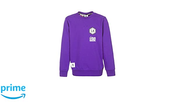 adidas Los Angeles Lakers NBA Washed Crew Sweatshirt