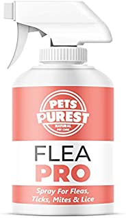 Pets Purest 100% Natural Flea Spray For Dogs (500ml) Flea Mite Tick & Lice Spray For Dogs, Cats Horses &am