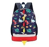 Best Backpacks For Boys - Kids Backpack Dinosaur Rucksack for Boys Girls Toddler Review