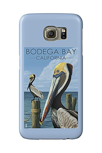 Bodega Bay, California - Brown Pellican (Galaxy S6 Cell Phone Case, Slim Barely There)